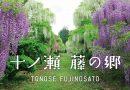 十ノ瀬 藤の郷 専用サイトをオープン