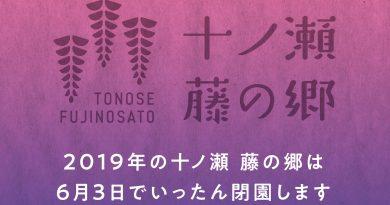 2019年の十ノ瀬 藤の郷は6月3日でいったん閉園します