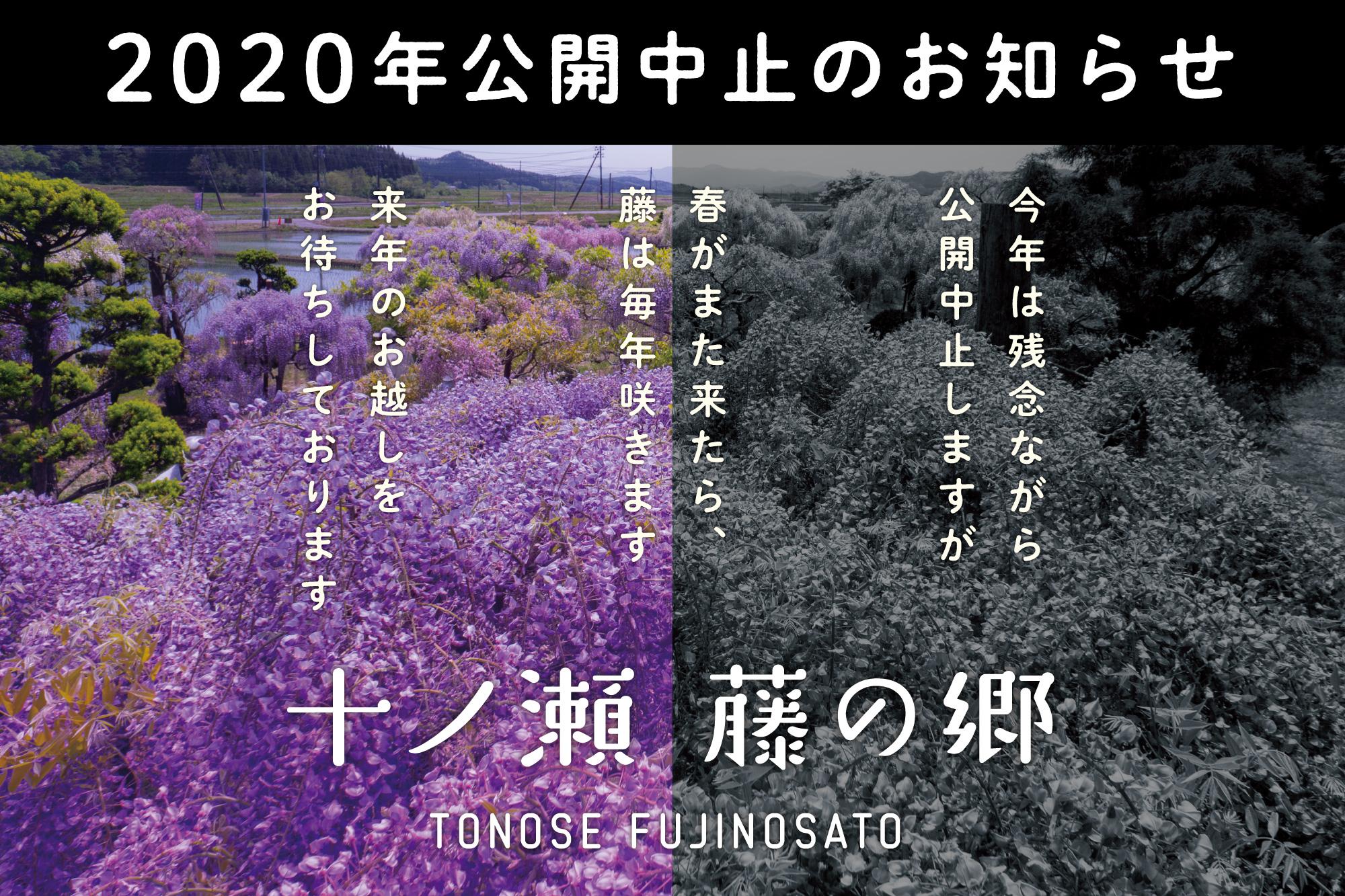 十ノ瀬 藤の郷