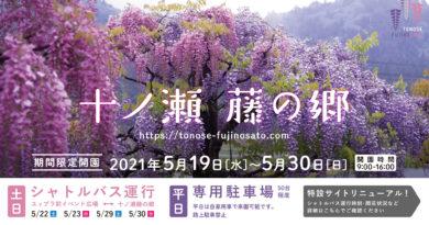 十ノ瀬 藤の郷 2021 開園のお知らせ